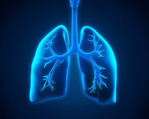 Homecare Greece NY - Do You Know the Symptoms of Tuberculosis?