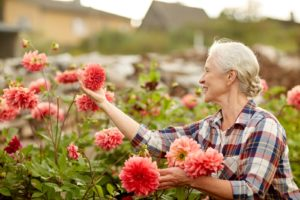 Elder Care Rochester NY - Is Vermicomposting Better for Your Elderly Parent?